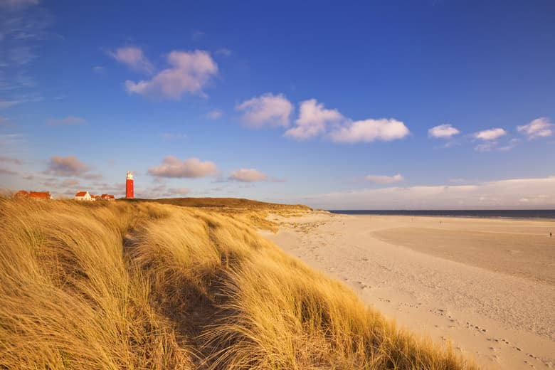 beach holiday on texel