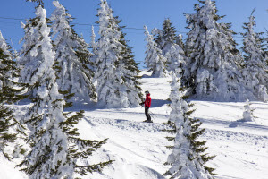 Wintersport_Eifel