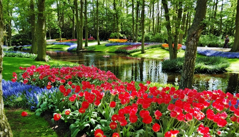 attractions in holland