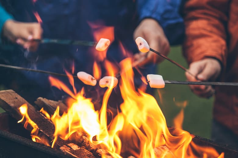 Roasting marshmallows on a bonfire with friends